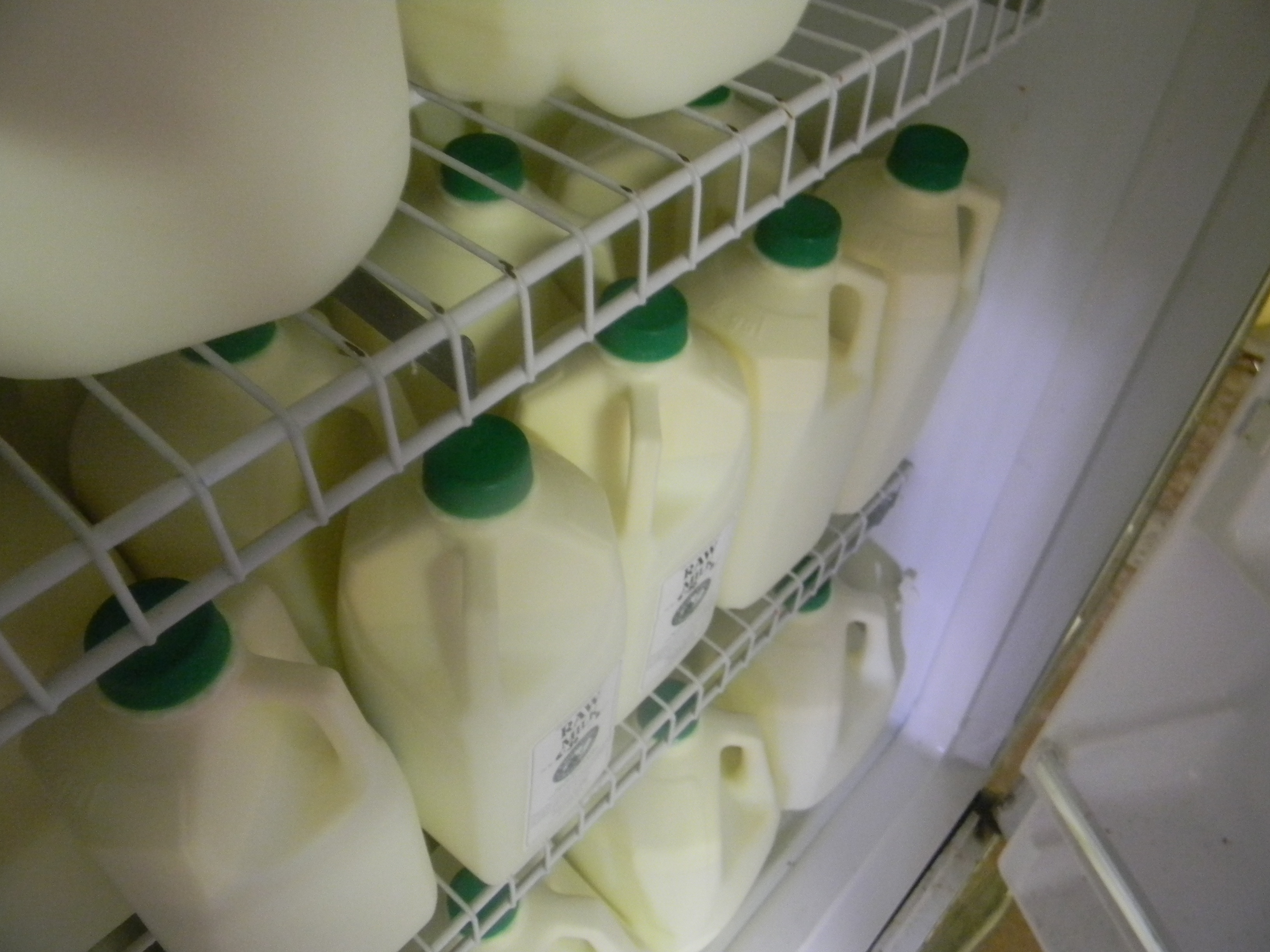 Bottled raw milk ready for sale!